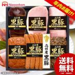 お歳暮 御歳暮 ギフト ハム 日本ハム 送料無料 詰め合わせ 詰合せ 九州産黒豚 KB-56 ウインナー ソーセージ 食品 セット