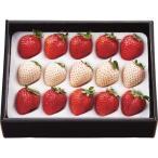 お歳暮 御歳暮 早割 フルーツ 果物 詰め合わせ ギフト 詰合せ いちご イチゴ 苺 紅白いちご 計200g お返し 挨拶 お礼 会社 ランキング 食品