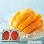 お中元 御中元 2021 沖縄県産 マンゴー 2玉 沖縄 フルーツ 果物 詰め合わせ お取り寄せ ギフト お返し 挨拶 お礼 ランキング 人気 食品