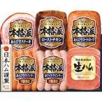 お中元 御中元 2021 ハム ソーセージ ギフト 詰め合わせ お取り寄せグルメ 肉 肉加工品 日本ハム 本格派ギフト SN-36 お返し 挨拶 食品