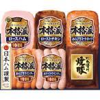 お中元 御中元 2021 ハム ソーセージ ギフト 詰め合わせ お取り寄せグルメ 肉 肉加工品 日本ハム 本格派ギフト SN-41 お返し 挨拶 食品