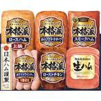 お中元 御中元 2021 ハム ソーセージ ギフト 詰め合わせ お取り寄せグルメ 肉 肉加工品 日本ハム 本格派ギフト SN-52 お返し 挨拶 食品