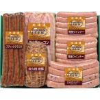 内祝い 内祝 お返し メーカー直送 送料無料 ハム 肉加工品 セット 詰め合わせ 北海道トンデンファーム バラエティセット TF-5YS (1)