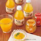 内祝い お返し みかんジュース ストレート ジュース 詰め合わせ ギフト 伊藤農園 100% ピュアジュース & ジュレ セット V-113 (4)