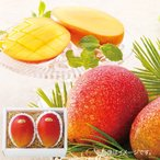 お中元 御中元 ギフト マンゴ フルーツ 果物 お取り寄せスイーツ グルメ 沖縄マンゴ 2玉 BF-2007149 メーカー直送 送料無料