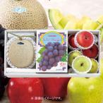 お歳暮 御歳暮 フルーツ 果物 詰め合わせ ギフト 詰合せ  温室マスクメロン & りんご & コールマンぶどう 詰合せ BF-2012294 食品
