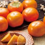 お歳暮 御歳暮 フルーツ 果物 詰め合わせ ギフト 詰合せ 柿 かき カキ 富有柿1.8kg  8玉 BF-2012180 お返し 挨拶 お礼 食品