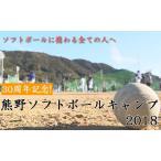 30周年記念 熊野ソフトボールキャンプ2018 1019-S 全3巻 ソフトボールを愛するすべての人に