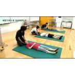 寝返り動作・起き上がり動作のバイオメカニクスと動作分析 石井慎一郎 理学療法 ME185-S 全2巻