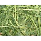 (1kg)アメリカ産ホースプレミアムアルファルファ牧草(うさぎ等小動物向け)