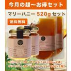 送料無料 マリーハニーTA 20+(130g)ボトル×2本/スタンドパック×2個 マヌカハニーと同様の健康活性力!オーストラリア・オーガニック認定 honey はちみつ 蜂蜜