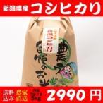 令和2年度産 新潟産コシヒカリ 新米美味いコシヒカリ100%精米7分5キロ