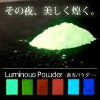 人気のグローネイル 蓄光パウダー 6色