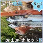 地魚鮮魚おまかせセットB(5�7種) ギフト 千葉南房総