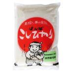 母の日 石川県産 2020年産 新米 特別栽培米 自然栽培米こしひかり 白米2kg 精米 産地直送 無農薬 コシヒカリ