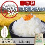新米 玄米 30kg 富山県産 コシヒカリ 令和2年産 1等米 ばんどり米 送料無料