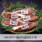 母の日 富山 とと屋  塩ぶり詰合せ 5袋  冷凍便 産地直送 人気 無添加