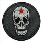 航空自衛隊グッズ・飛行教導隊 パッチ・ワッペン(PA23T)