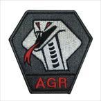 航空自衛隊グッズ 飛行教導隊 パッチ・ワッペン(PA38T-AGR)