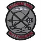航空自衛隊 第6飛行隊パッチ ワッペン PA78-TN-Low