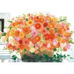 ジグソーパズル APO-48-732 フラワー 出会いに恵まれるキューティーオレンジ 300ピース [CP-F]