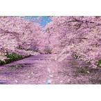 ジグソーパズル BEV-51-251 風景 弘前公園の桜 1000ピース [CP-C]