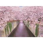ジグソーパズル EPO-05-111 風景 目黒川の春-東京  500ピース