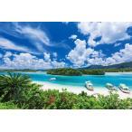 ジグソーパズル EPO-10-783 風景 石垣島の碧い海-沖縄 1000ピース