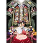 ジグソーパズル TEN-DS1000-763 ディズニー ファンタジーセレブレーション(ミッキー) 1000ピース [CP-D]