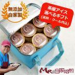 アイスクリーム 12個セット アイスクリーム 選べる ギフト 自家製アイス 送料込 茶屋アイス 茶屋アイスギフト クーラーバッグ入り