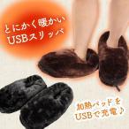 ����å� USB �ܥ� �롼�ॷ�塼�� ���ä��� ��ǥ����� �եåȥ������ޡ� �䤨��