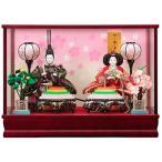 雛人形 ケース飾り 親王飾り ひな人形 光琳 143-202