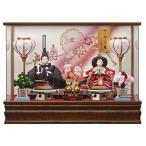 雛人形 ケース飾り ひな人形 親王飾り 羽衣 紫 163-250