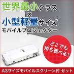 Winter SALE★今なら大特価&スクリーン付き!