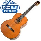 クラシックギター アリア A-20 Aria アコースティック (シダー材 単板) 初心者 入門 モデル