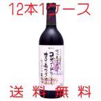 アルプスワイン 無添加ワイン 信州コンコード 赤 甘口 720ml×12本 1ケース 送料無料