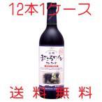 アルプスワイン 無添加 信州まごころワイン コンコード 赤 中口 720ml×12本 1ケース 送料無料