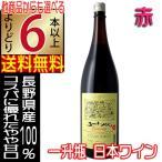 五一ワイン エコノミー Economy 赤 1800ml やや甘口 長野県 国産ワイン 6本以上送料無料