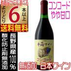 イヅツワインの新酒、酸化防止剤無添加ワイン人気の赤ワイン