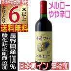 井筒ワイン 2017 新酒 無添加 メルロー 赤 辛口 720ml 国産ワイン よりどり6本以上送料無料 wine