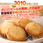 手作りダイエットおからクッキー 5袋 125枚 17〜25食分