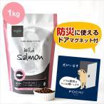 POCHI(ポチ) ザ・ドッグフード ワイルドサーモン 1kg 2019カレンダー付