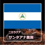 ショッピング父の日 ギフト コーヒー ニカラグア サンタアナ農園 250g(生豆時)  / クリックポストで送料無料/自家焙煎コーヒー豆 / ご注文後の完全個別焙煎