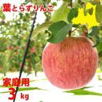青森りんご(送料無料)葉とらずりんご(家庭用)サンふじ3kg10〜12玉(わけあり不揃い訳あり)クール便