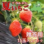 夏秋いちご すずあかね(贈答用)15玉×2合計30玉(送料別)