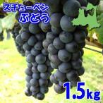 (送料無料)スチューベンぶどう 1.5kg×1箱(4〜7房)青森県鶴田産
