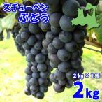 (送料無料)スチューベンぶどう 2kg×1箱(6〜9房)青森県鶴田産