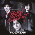 [枚数限定][限定盤]BURN THE SECRET(初回限定盤)/WANDS[CD+DVD]【返品種別A】
