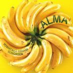 Alma〜南佳孝作品集/オムニバス[CD]【返品種別A】