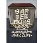 SALVAGE 1984-1992 BARBEE BOYS MUSIC CLIPS/バービーボーイズ[DVD]【返品種別A】